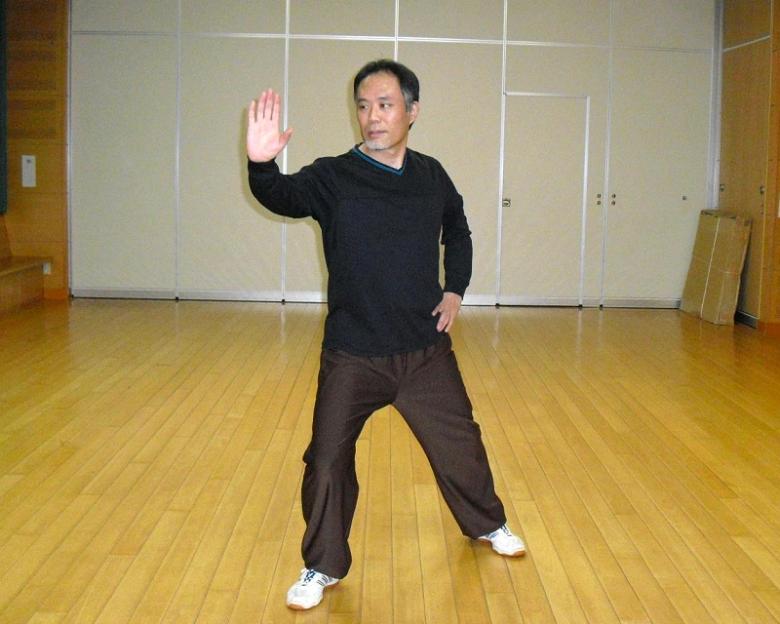 陳式太極拳 老架式 懶扎衣(らんざつい)の写真