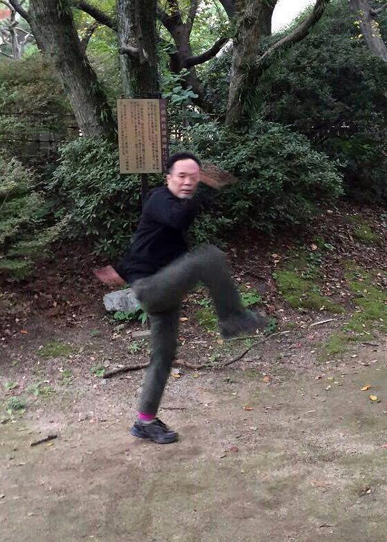 宋派八卦掌 鷂子穿林の写真