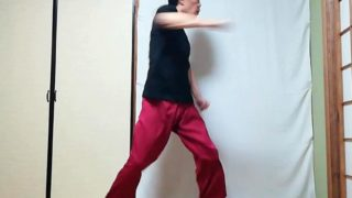 陳式太極拳 演手捶の写真