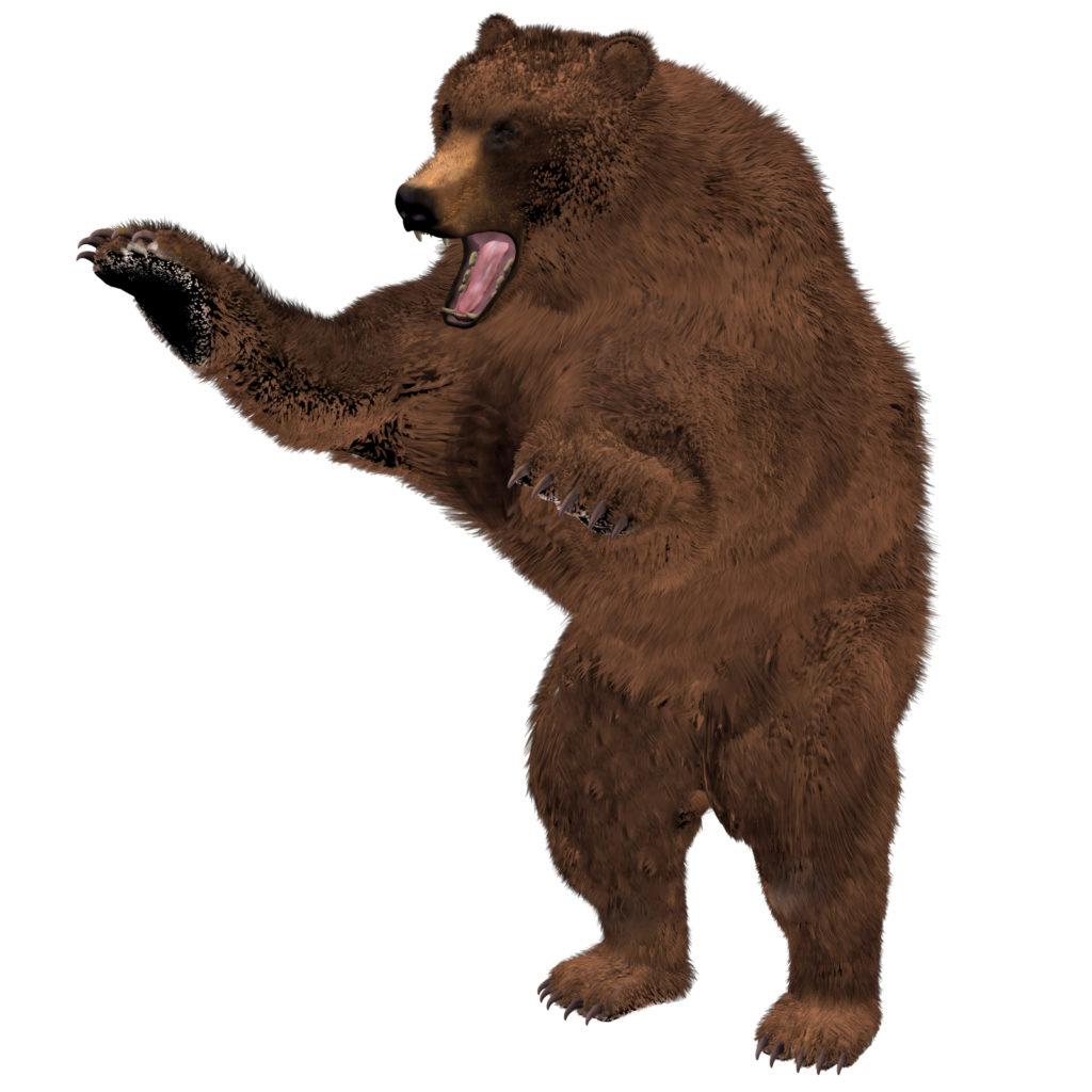 立ち上がり、手を振り下ろす熊