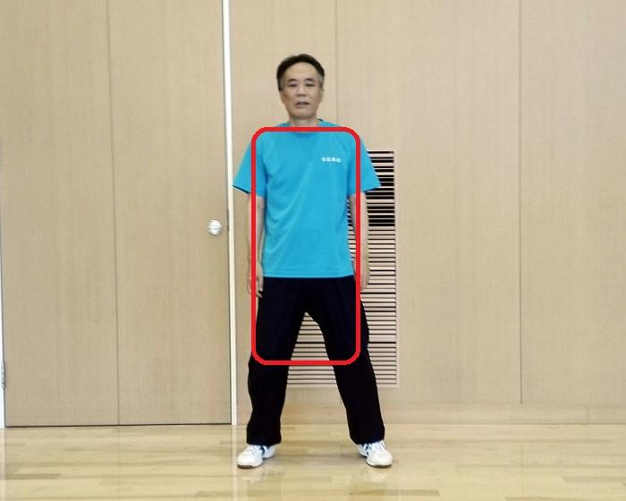 両肩から両膝までを一枚の板とする太極拳の姿勢