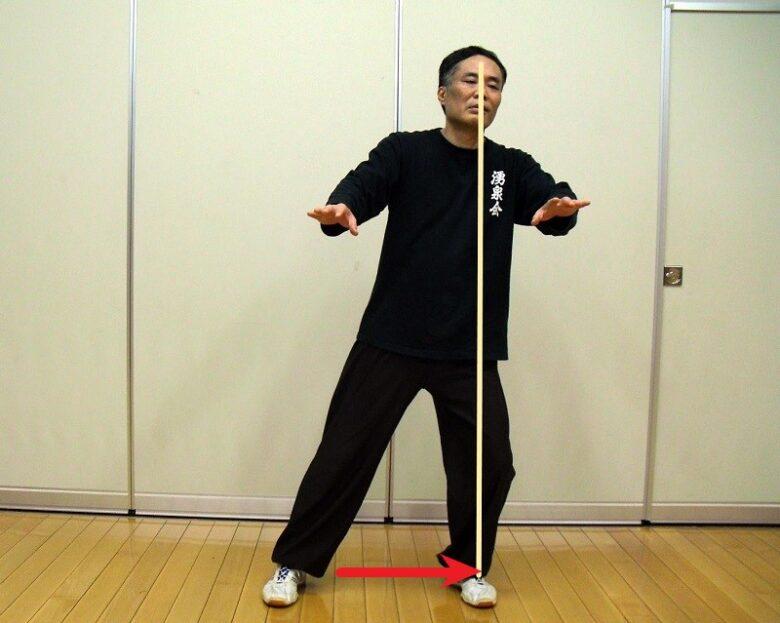 太極拳の歩法練習 左単重の写真