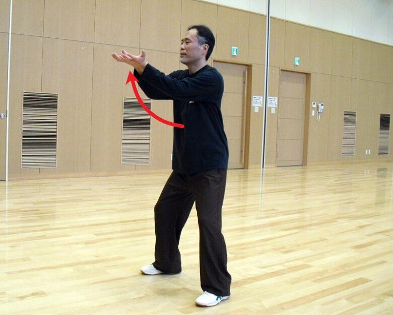 太極拳の基本功である白猿献果の落式の写真