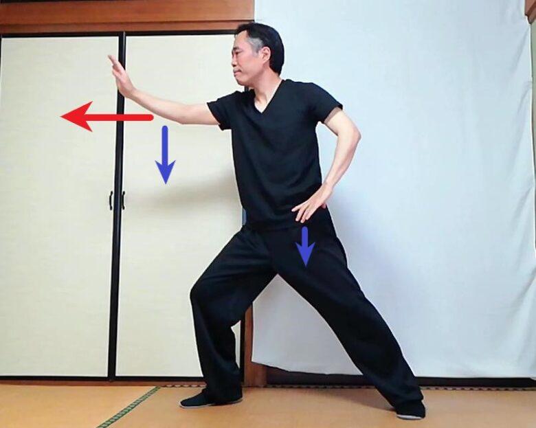 陳式太極拳 懶扎衣の按勢の写真