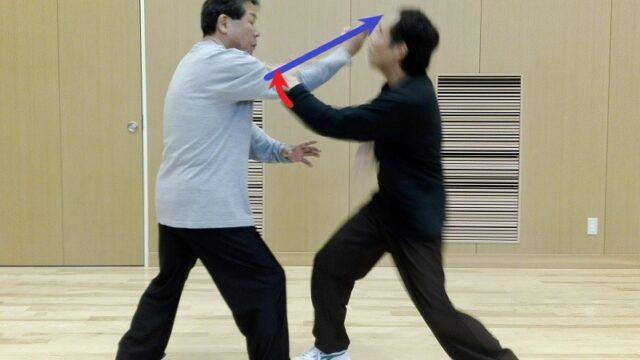 陳式太極拳 懶扎衣の応用例の写真