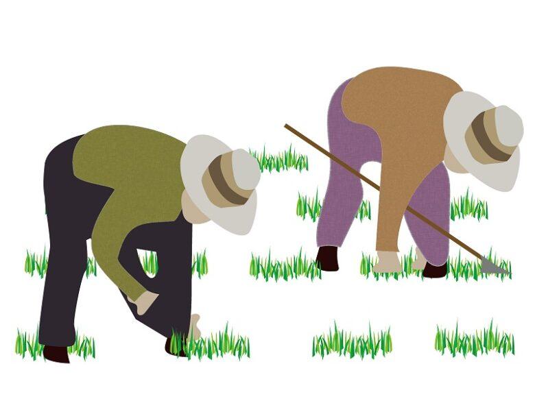 前傾姿勢で畑作業をするイラスト