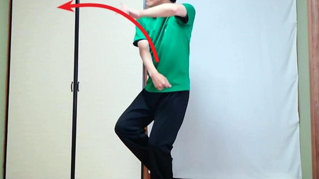 楊式太極拳 攬雀尾の型の写真